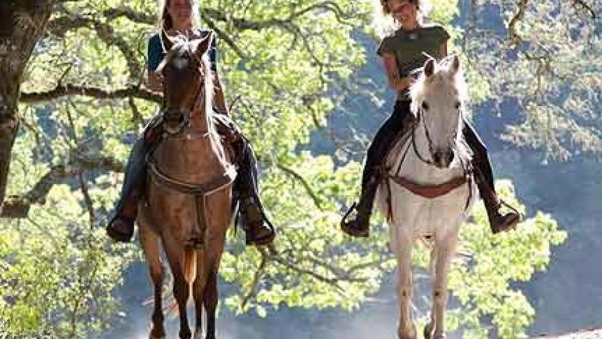 Escursioni a Cavallo Versilia