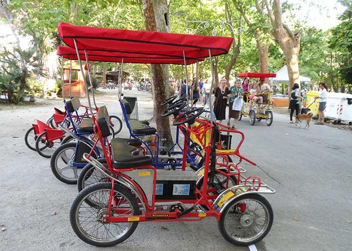 Noleggio Biciclette Versilia Guide